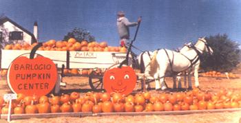 Barlogio Pumpkin Centery