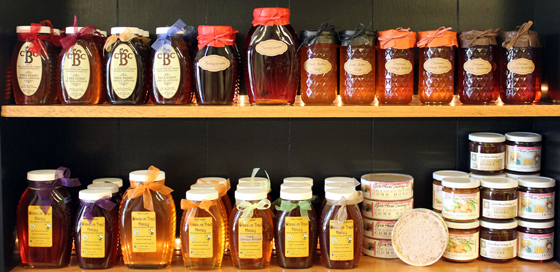 Pure Natural Raw Honey